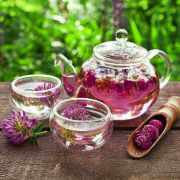 Red clover tea benefits