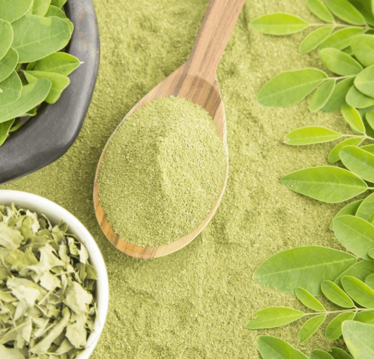 moringa benefits for men