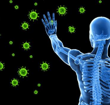 Immune-Supporting Antioxidant