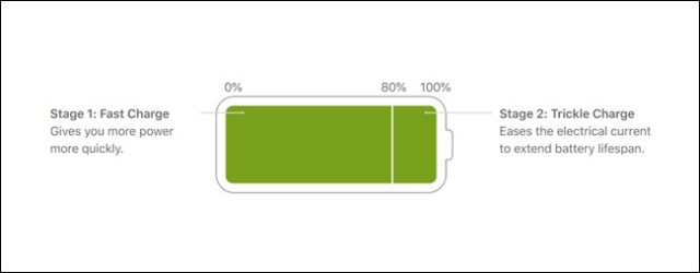 The picture of the battery shows that the first 80% are in fast charge, the final 20% in sustaining charge