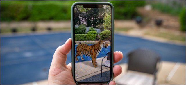 A hand holding a phone with a tiger on the screen.