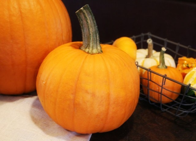 A pie pumpkin in the center, with a basket of gourds and a large carving pumpkin in the background.