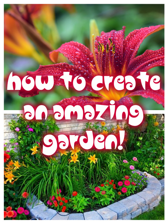 How To Create An Amazing Garden!