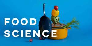 ielts essay food science