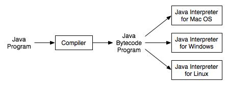 Platform Specific Interpreters