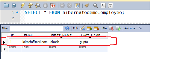 Hibernate insert query example