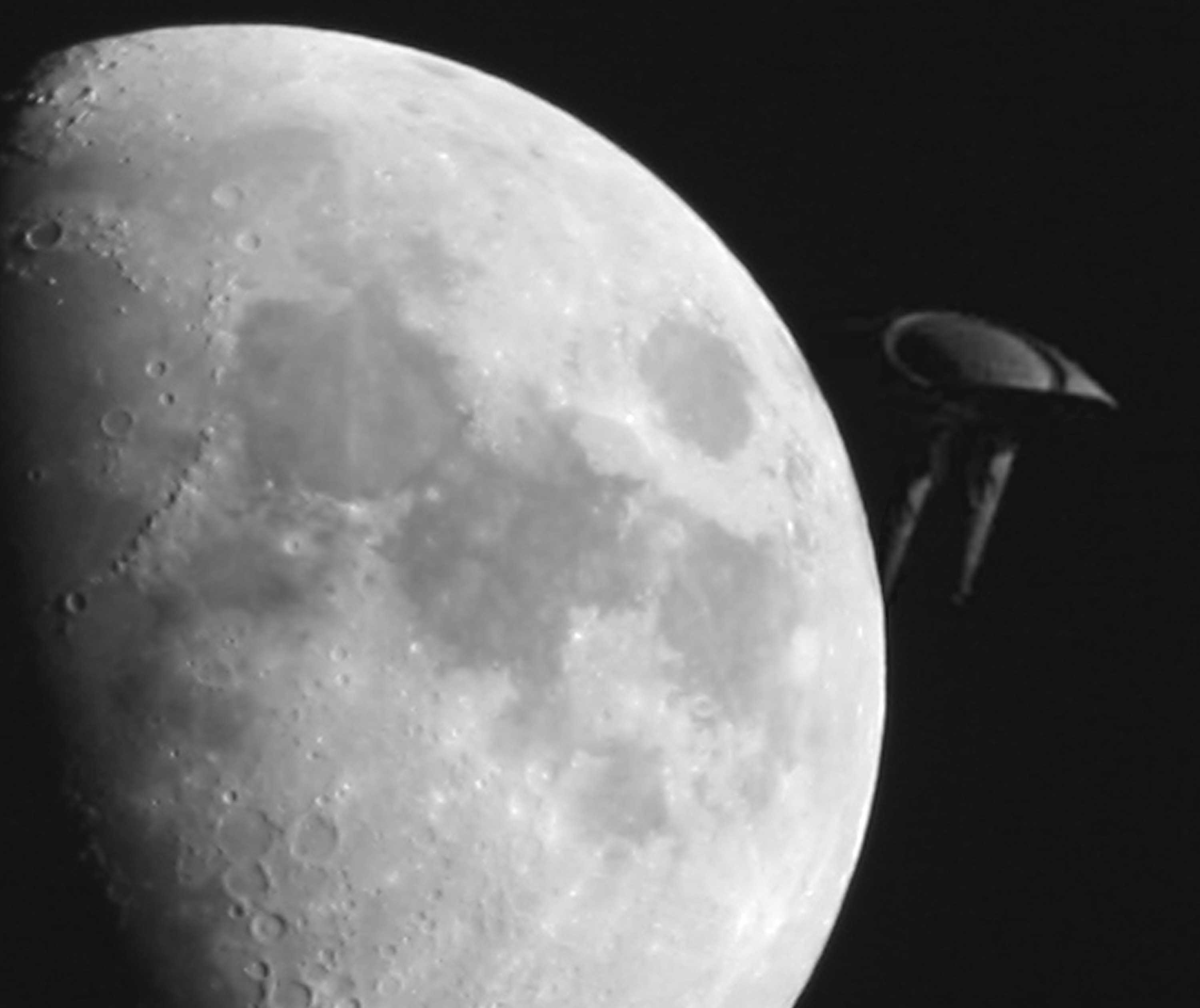 Whistleblower: Massive Extraterrestrial Crafts Hiding Behind Moon
