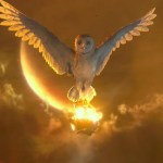 Are All Spirit Guides Of The Light?