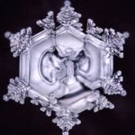 Dr. Masaru Emoto Believed that Water is 'Something Not of This Earth'