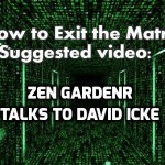 Now And Zen – Zen Gardner Talks To David Icke