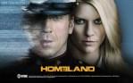 TV Suggestion: Homeland