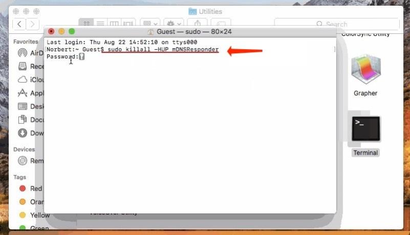 Flush DNS Cache - MacOS 10.15: Catalina