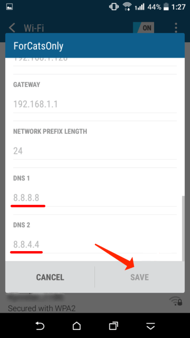 Define Google DNS 8.8.8.8 and 8.8.4.4 as DNS1 and DNS2