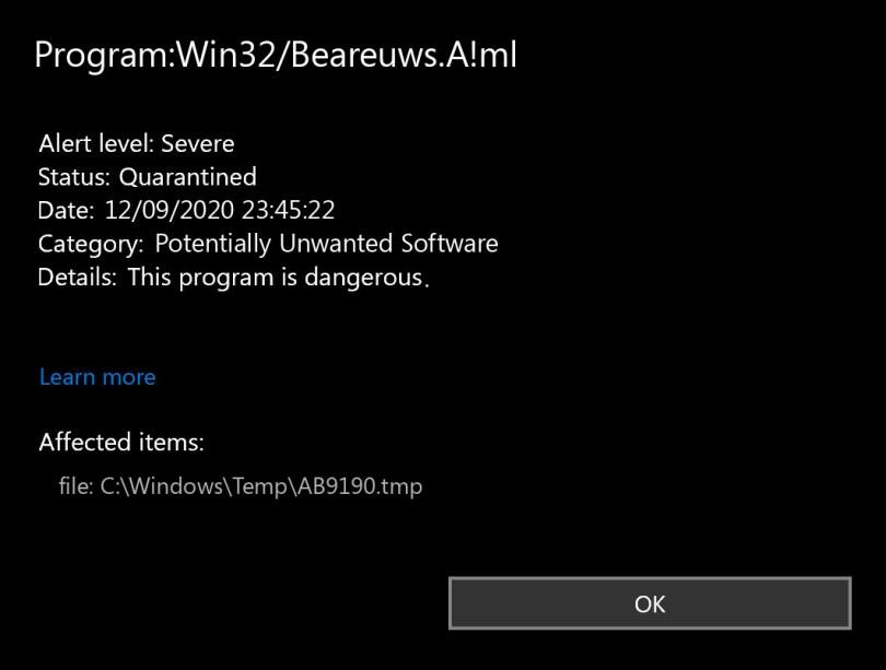 Program:Win32/Beareuws.A!ml found