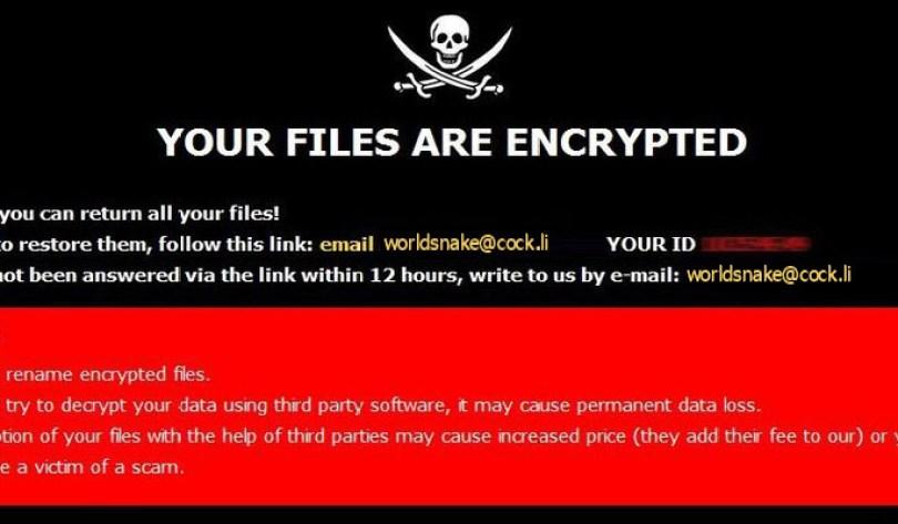 [worldsnake@cock.li].World virus demanding message in a pop-up window