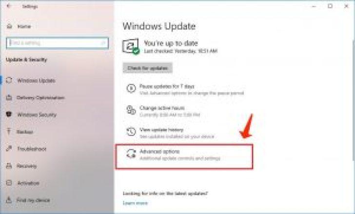 Windows 10 更新高級選項