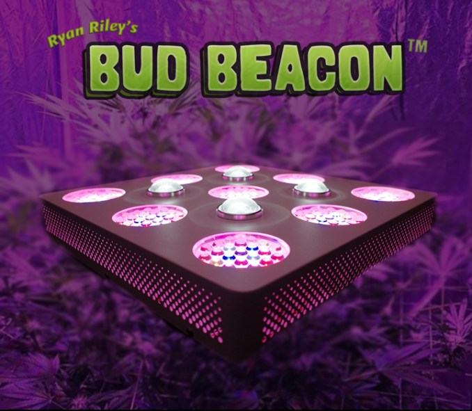 ryan rileys bud beacon - the best marijuana goriwng LED lighting system for beginners to advanced seasoned industry professionals.