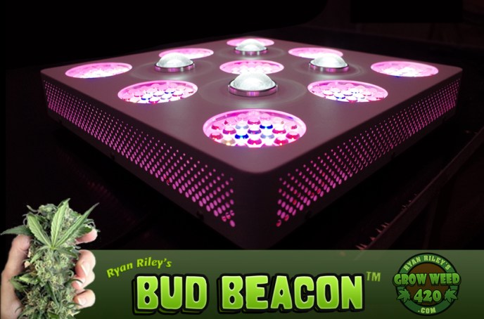 pros and cons of growing marijuana with an LED system