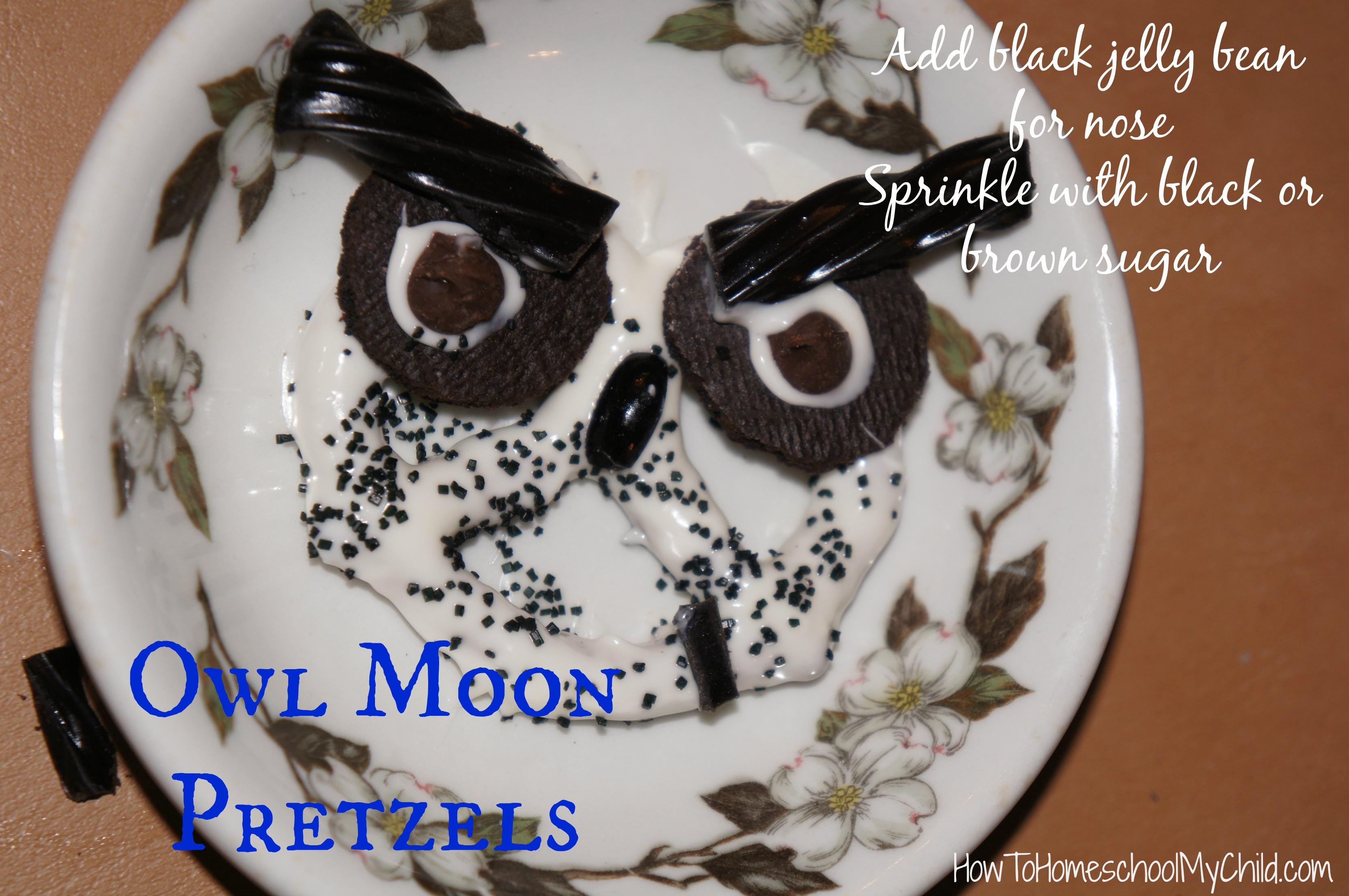 Owl Moon Activities For Kids