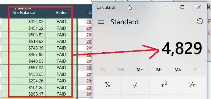 micro niche site paychecks