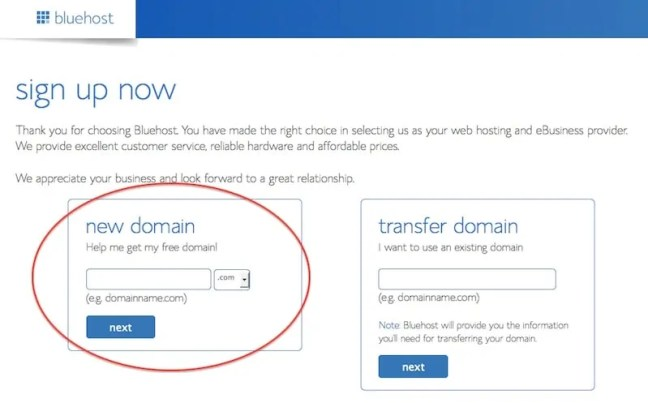 Choose your domain name