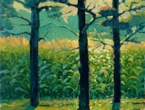 """Cornfield through Pines"""