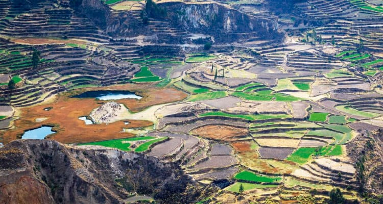 Top 10 Places Peru - Colca Canyon