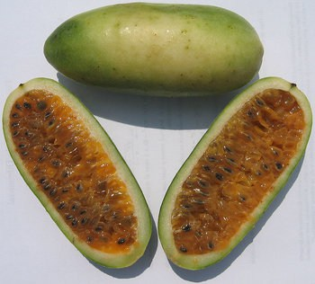 peruvian fruits and vegetables - tumbo fruit