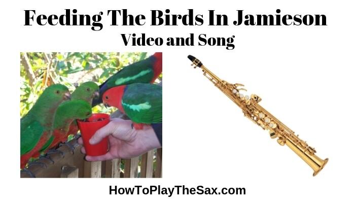 Feeding The Birds In Jamieson