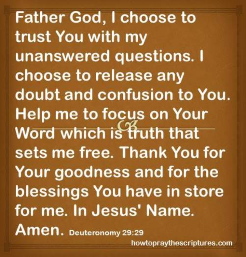 i choose to trust you with my questions deuteronomy 29-29