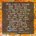 12 Encouraging Scriptures