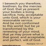 Encouragement Bible Verses For Women