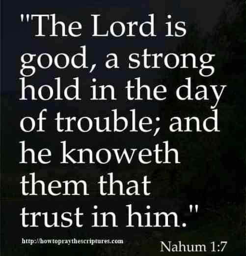 Feel Good Bible Verses