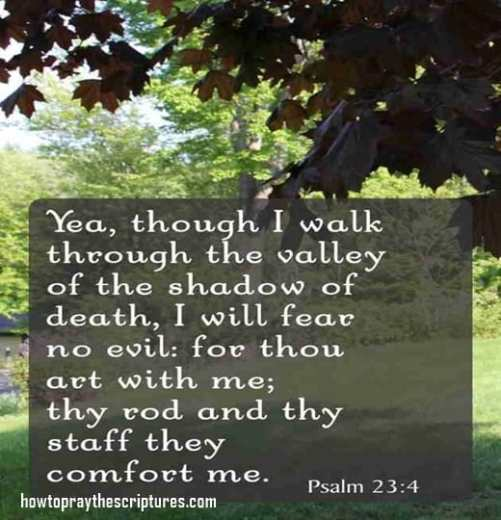 70 Best Images About Walk Your Family Through The Bible On: Yea Though I Walk Through The Valley