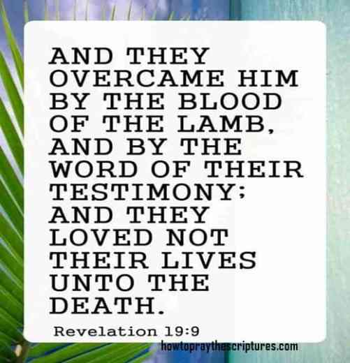 And They Overcame Him By The Blood Of The Lamb