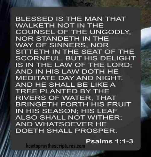 Blessed Is The Man That Walketh Not In The Counsel