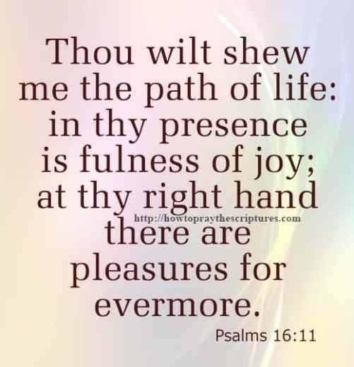 Thou Wilt Shew Me The Path Psalms 16-11