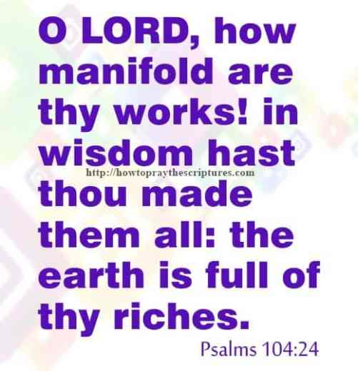 O LORD How Manifold Are Thy Works Psalms 104-24