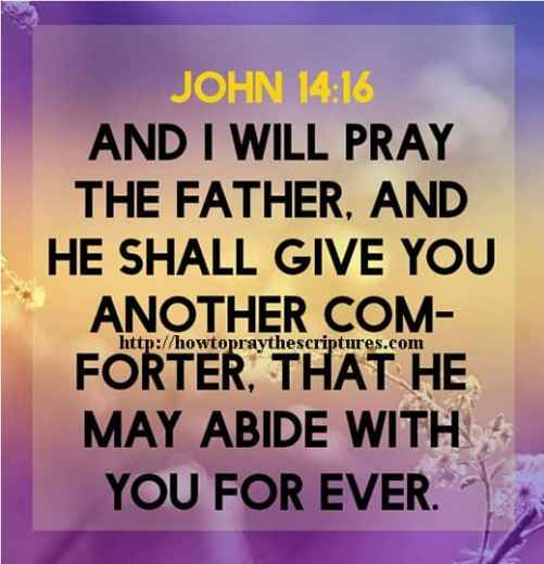 And I Will Pray The Father John 14-16