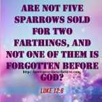 Are Not Five Sparrows Sold For Two Farthings Luke 12-6