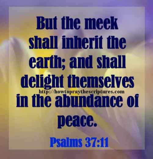 But The Meek Shall Inherit The Earth Psalms 37-11
