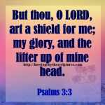 But Thou O LORD Art A Shield For Me Psalms 3-3