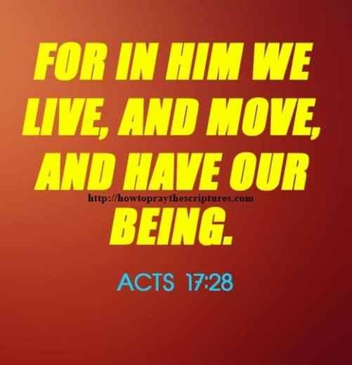 He That Hath The Son Hath Life 1 John 5-12