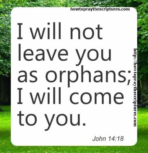 I Will Not Leave You As Orphans John 14-18