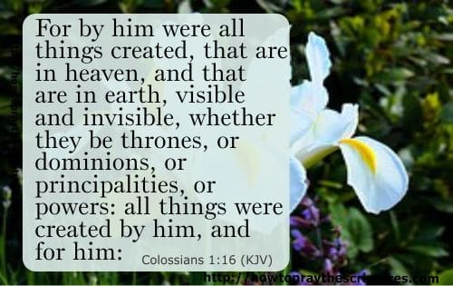 Jesus The Creator Of All Things