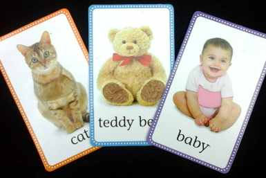 Examples of DK Publishing First Words Touch And Feel Picture Cards