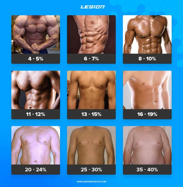 Body Fat Percentage Picture