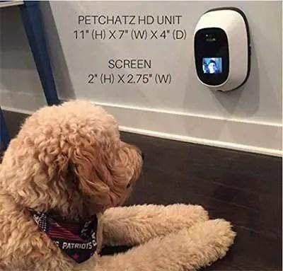 petchatz camera