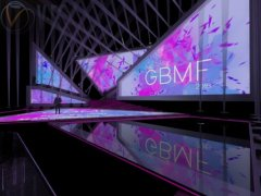 GBMF Stage 7 image 3