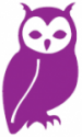 How Wise Then purple owl icon